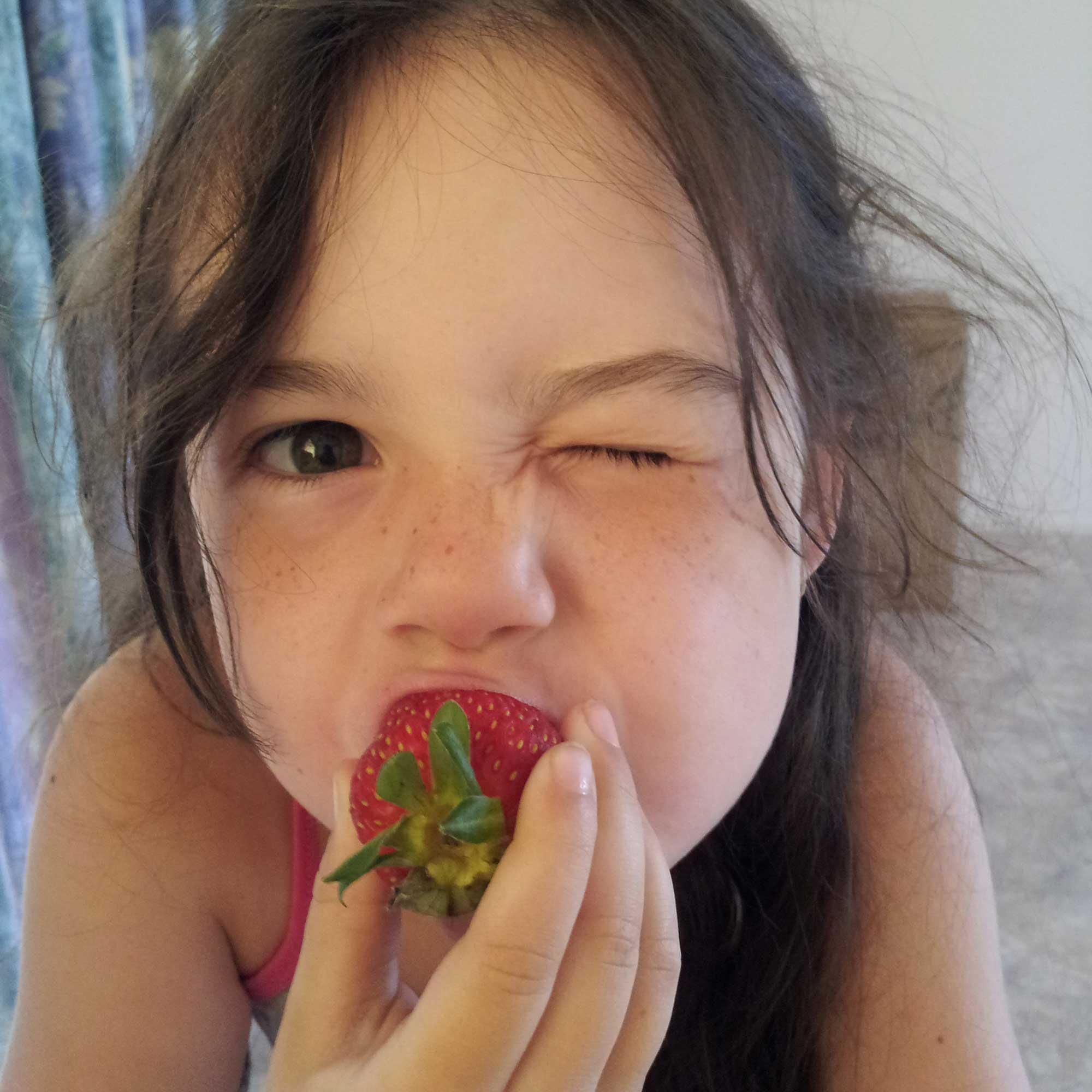 Tookii things to do with kids loves strawberries one of the activities for kids