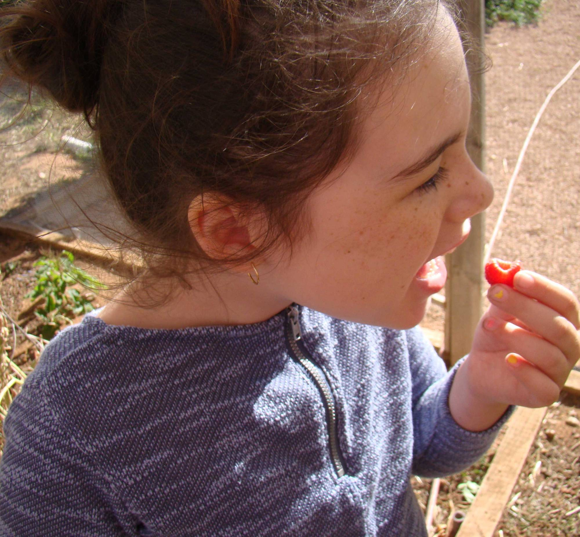 Tookii things to do with kids first taste of raspberries one of the outdoor activities for kids