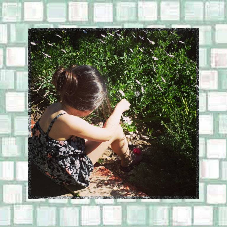 Tookii enjoying the flowers in the garden