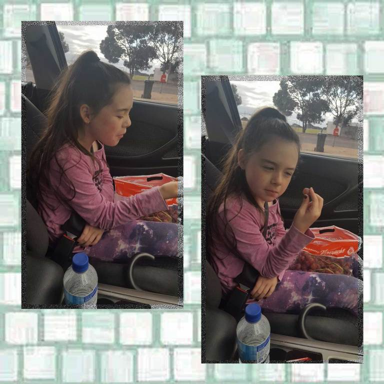 Tookii in car with snacks