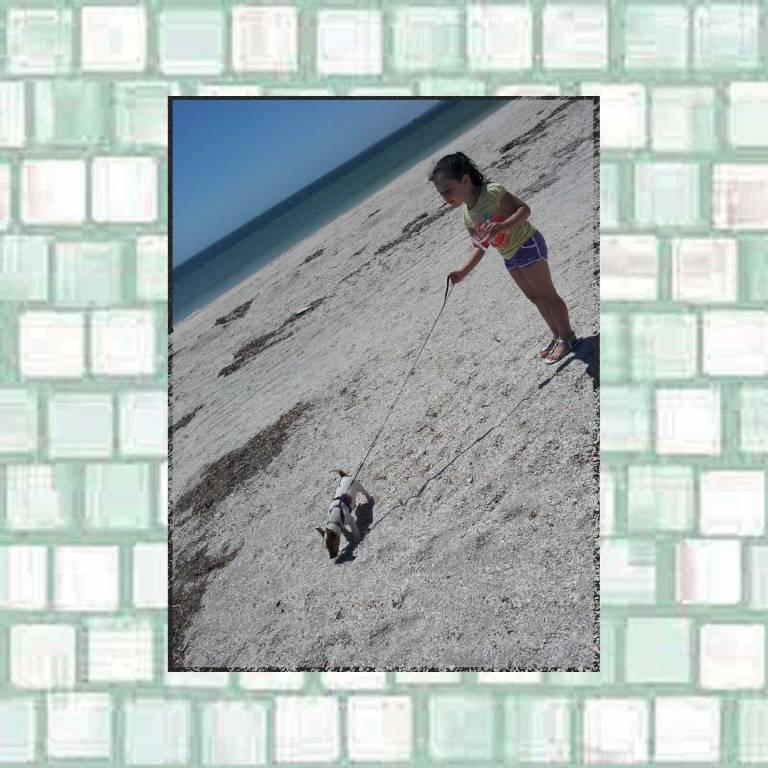 Tookii walking a dog