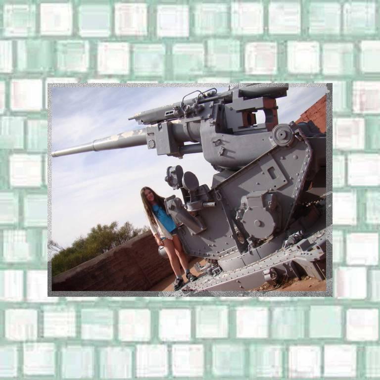Hummock Hill war gun