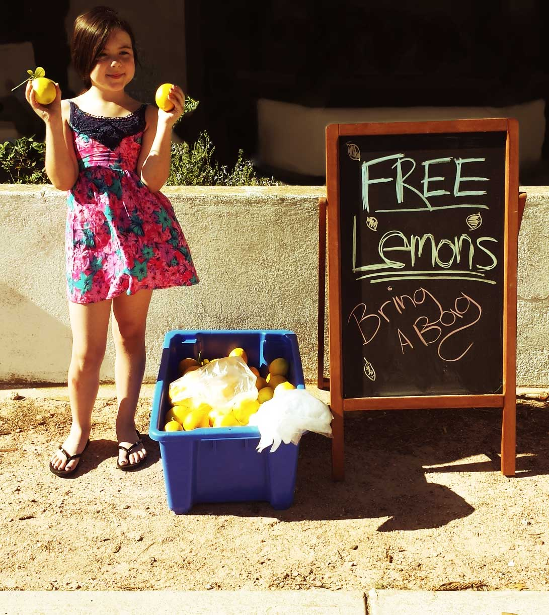 Tookii things to do with kids with lemons one of the outdoor activities for kids