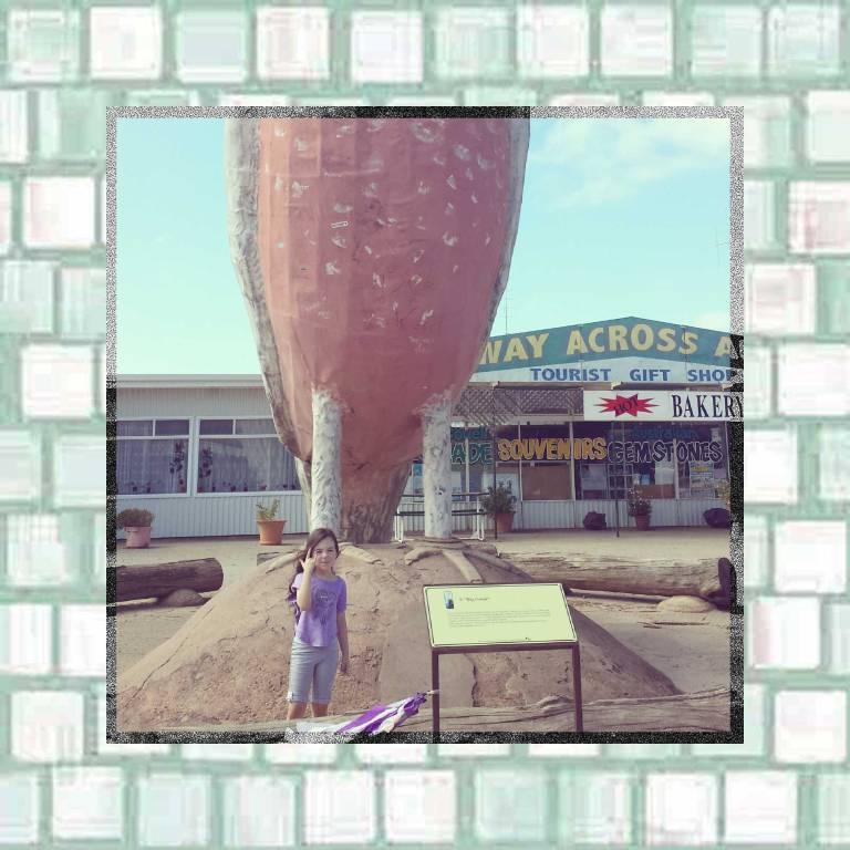Tookii visits The Big Galah