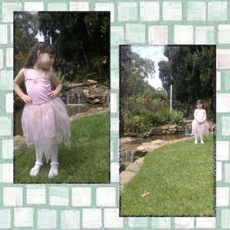 Tookii in the garden