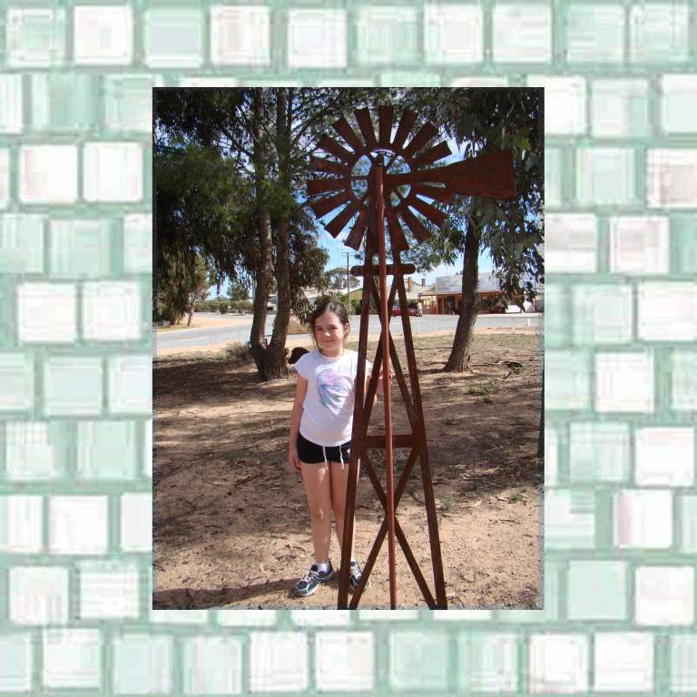 Tookii with windmill