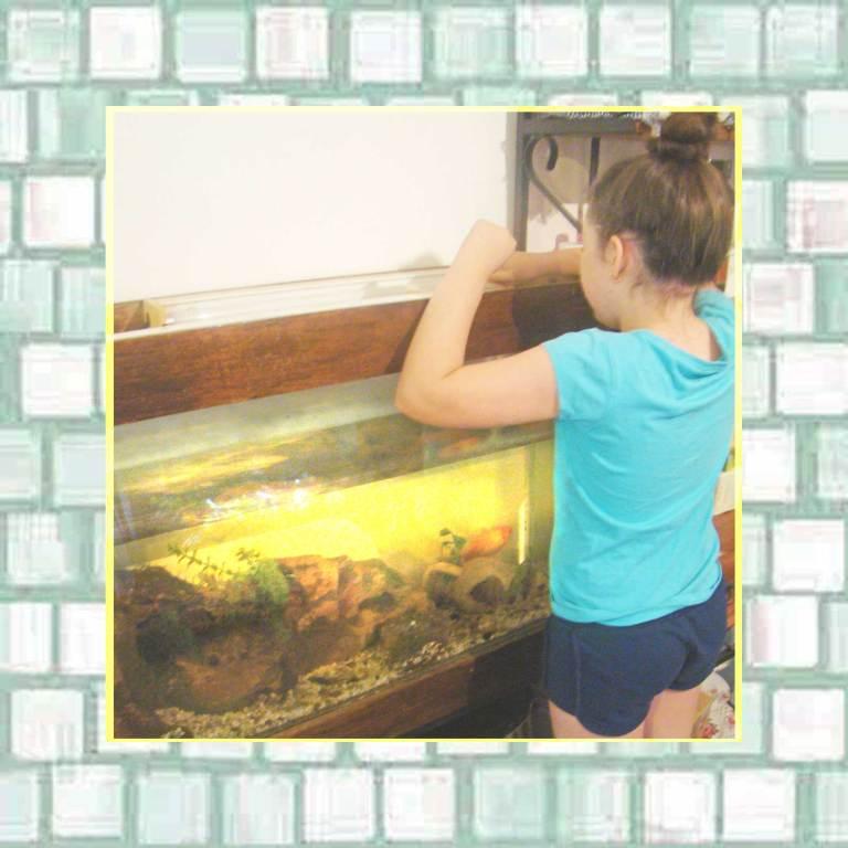 Tookii feeding her pet gold fish