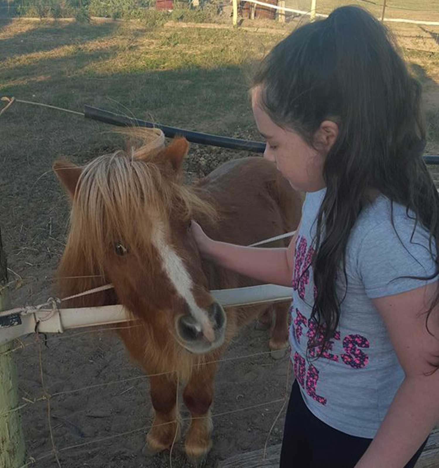 Tookii things to do with kids Miniature horse and Tookii one of the outdoor activities for kids