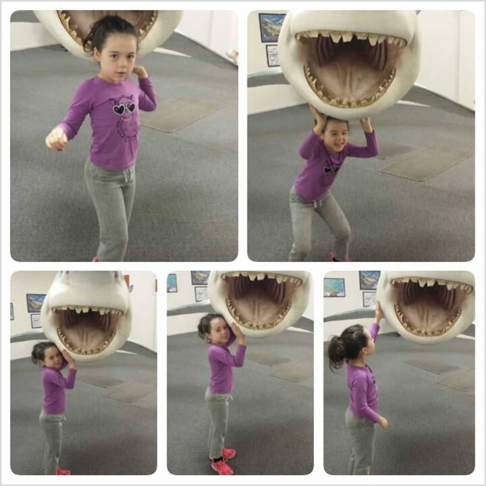 Tookii things to do with kids with shark one of the activities for kids