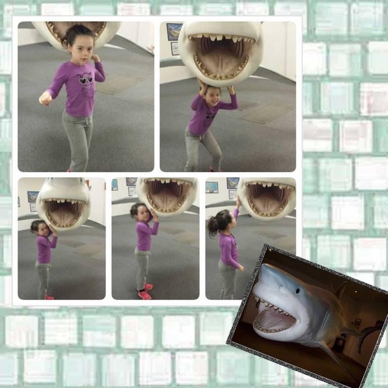Tookii with a shark