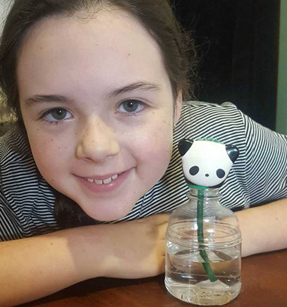 Tookii things to do with kids with her pet pet plant one of the gift ideas for kids