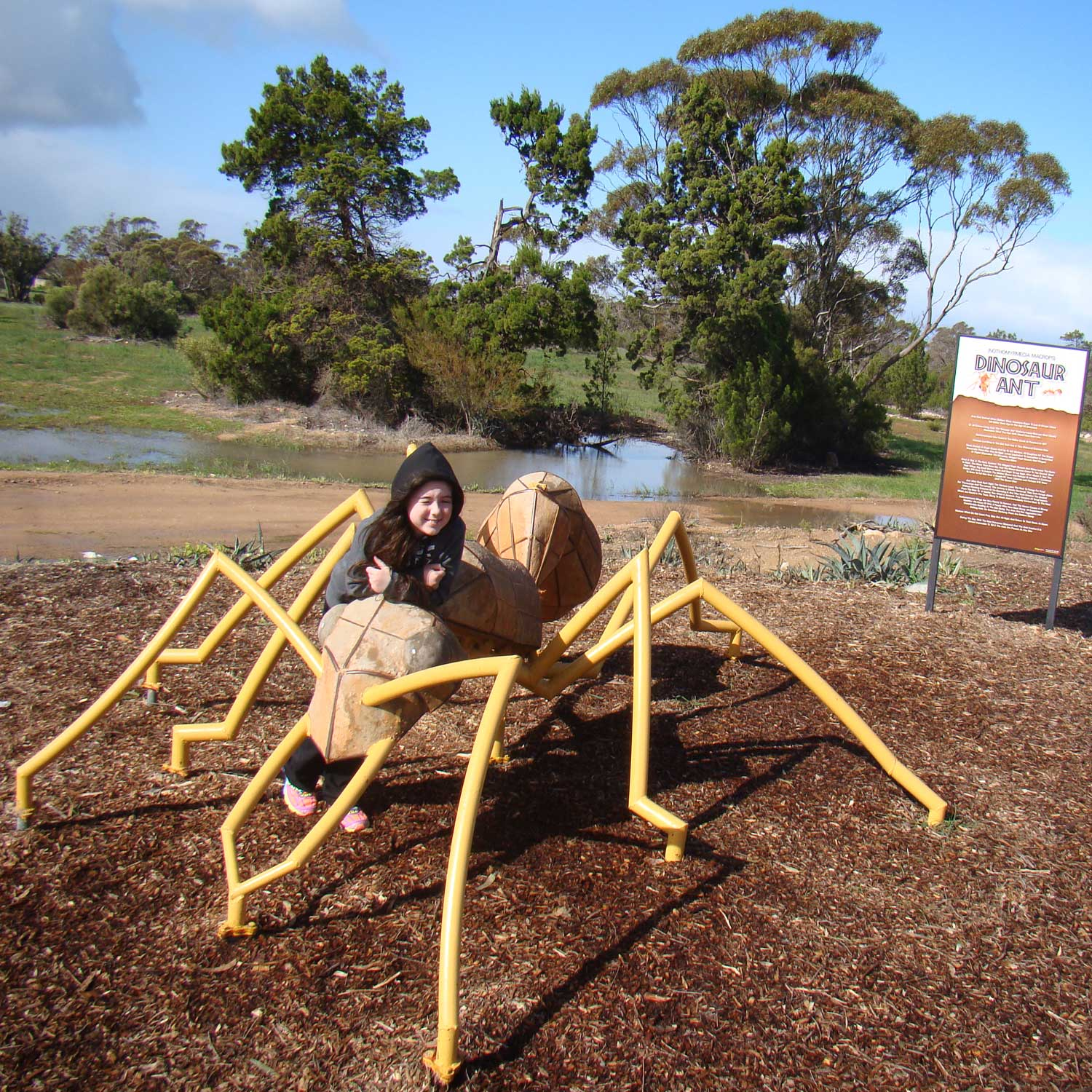 Tookii things to do with kids Big Ant Poochera South Australia one of the outdoor activities for kids
