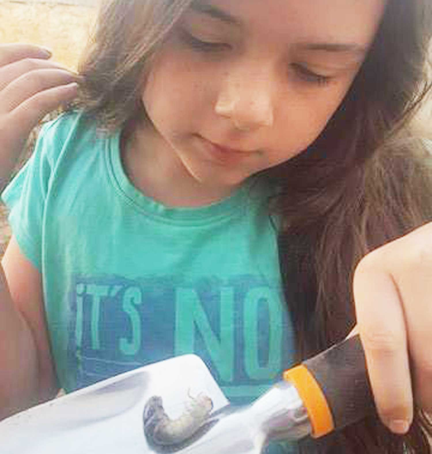 Tookii things to do with kids with a witchetty grub one of the outdoor activities for kids