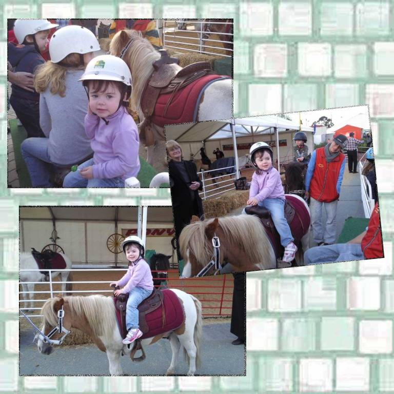 Tookii things to do with kids first pony ride